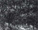 Untitled - Paramjit  Singh - StoryLTD Absolute Auction