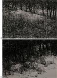 Untitled - Paramjit  Singh - Auction Dec 06