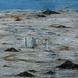 Black Landscape - Alok  Bal - Autumn Auction 2008