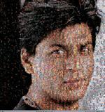 Ommatia III (Sharukh Khan) - Rashid  Rana - Spring Auction 2008