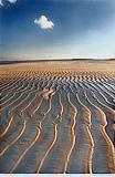 Combed Beach, Lakshwadeep - Raghu  Rai - 24-Hour Online Absolute Auction: Editions