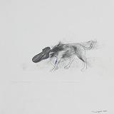 Dog and Shoe - Jagannath  Panda - StoryLTD Absolute Auction