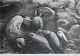 Zendo 1 - Prabir C. Purkayastha - StoryLTD Absolute Auction