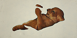 Untitled - Pradeep  Mishra - StoryLTD Absolute Auction