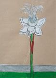 Untitled - Nicola  Durvasula - StoryLTD Absolute Auction