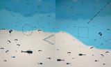 Air Show - Nataraj  Sharma - Autumn Art Auction