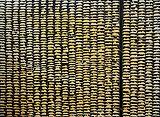 Para - Akhilesh   - Absolute Art Auction