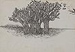Nandalal  Bose - Winter Online Auction