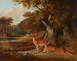 Deer in a Wooded Landscape - William  Daniell - From Classical to Contemporary