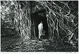 Untitled - Sunil  K - Kochi-Muziris Biennale Fundraiser Auction | Mumbai, Live