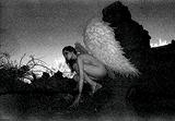 Vikram  Bawa-Flight from The Fallen Angel Series