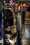 Ranbir  Kaleka-Lion and the Milk Bowl