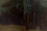 V  Ramesh-The Woods