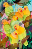 Senaka  Senanayake-Lovebirds