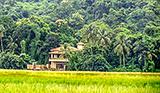 A Luxurious Contemporary Villa in Salvador do Mundo,North Goa - Prime Properties